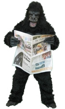image of gorilla holding newspaper